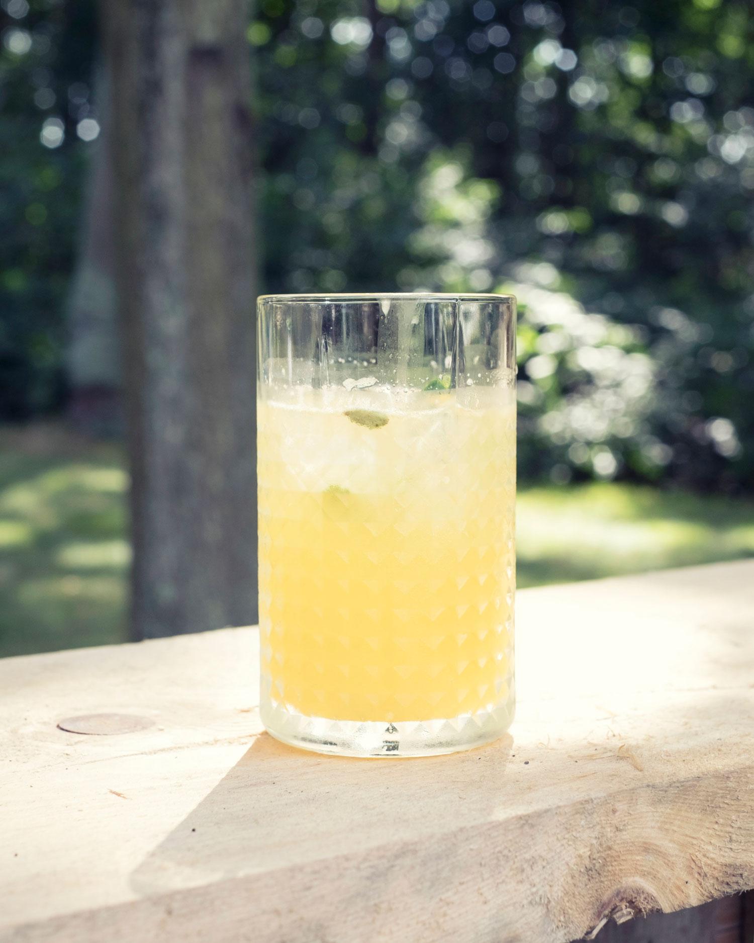 Gin tonic passievrucht citrus